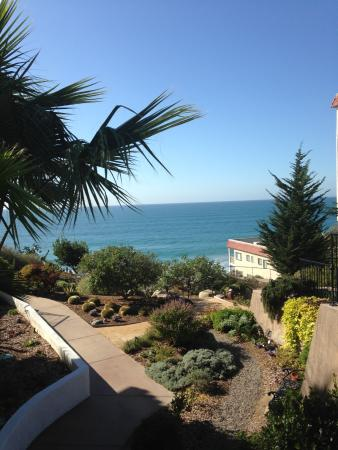 San Clemente, CA: A view from the garden.