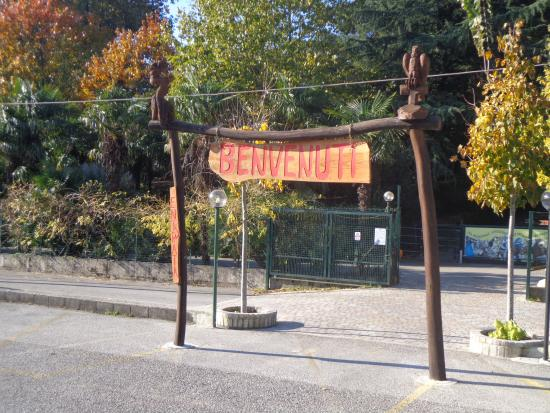 Giardino Zoologico Di Pistoia Photo De Giardino