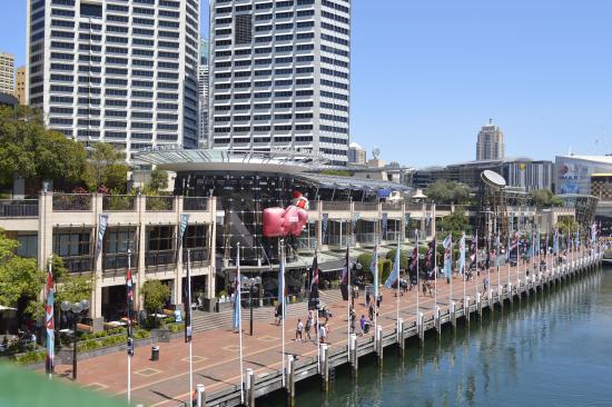 Adina Apartment Hotel Sydney Darling Harbour Harbor Side