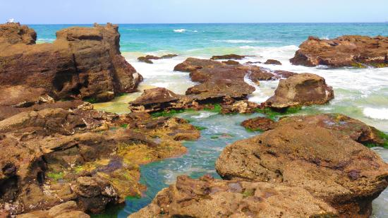 Swansea, Australia: Rock pools2