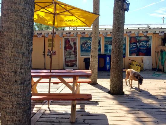 Crabbie Dad's Bar & Spirits : Back deck and Chop our mutt