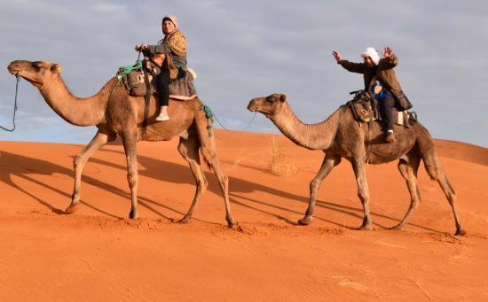 Best Morocco Private Tours - Day Tours