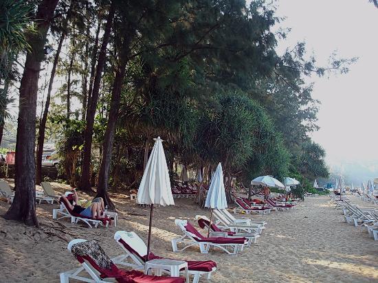 Naithonburi Beach Resort : Часть пляжа  отеля.