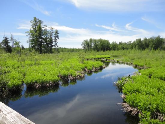 Bearskin State Trail