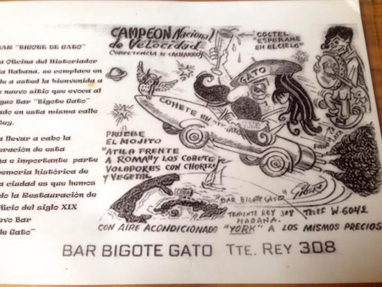 Bar Bigote Gato: Locandina del Bigote Gato