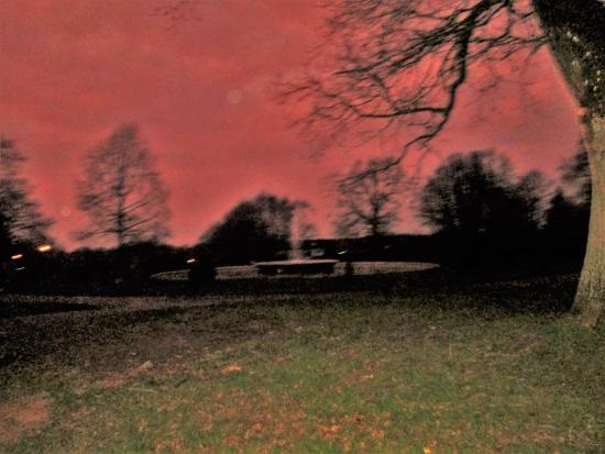 Nightfall in Worth Park Gardens