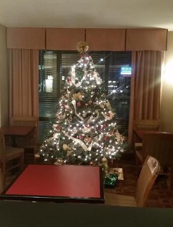 Westport, MA: The lobby had a beautiful tree for the holiday season