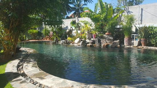 Ever Green Guesthouse: 20151215_093643_large.jpg
