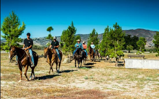 Trail Ride Temecula