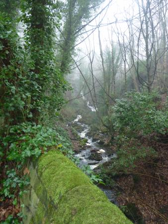Tansley, UK: Lumsdale