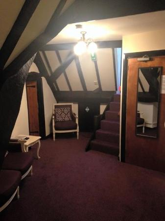 Maesmawr Hall Hotel: Suite
