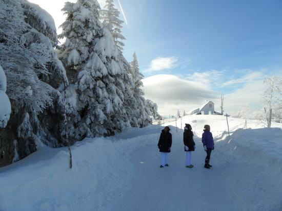 Maholyne: De magnifiques balades à pieds ou en raquettes - ski alpin et ski nordique - luge