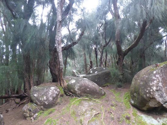 Hoolehua, Hawái: Phallic Rock 5