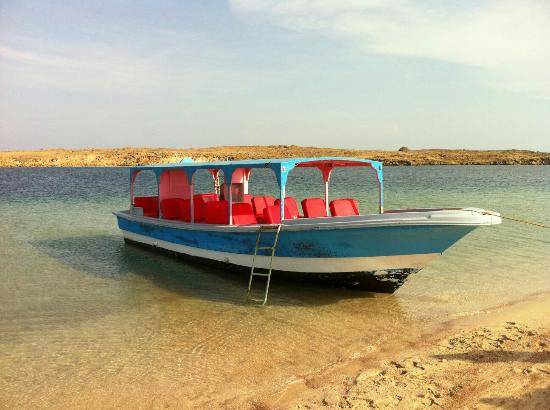 Farasan Coral Resort: Farasan Coral Resort