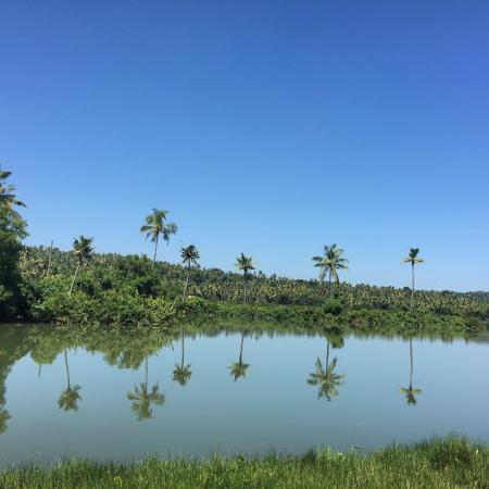 Ponnumthuruthu Island Photo