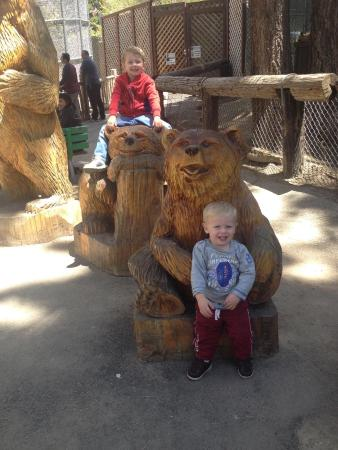 Big Bear Alpine Zoo at Moonridge: photo0.jpg