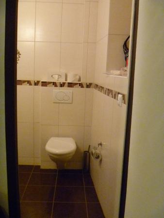 Hostellerie de Genève (Hôtel) : Bathroom (view from room)