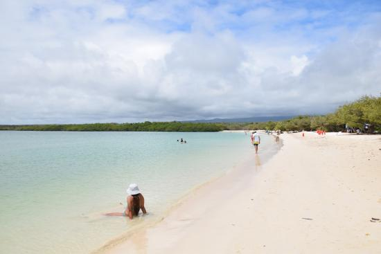 Santa Cruz Island Mansa Beach
