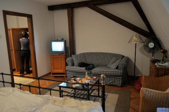 Casa cu Cerb: TV and couch in room no 6