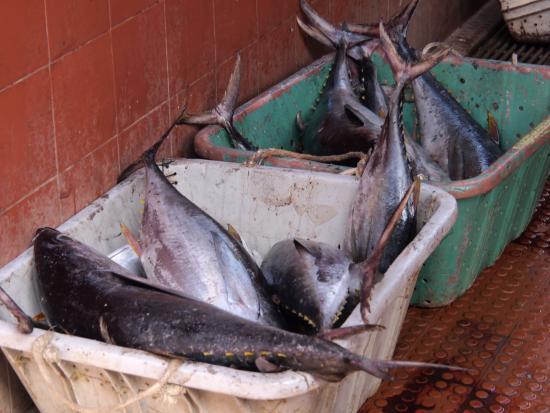 Mercado de Peixe: Fischmarkt Mindelo