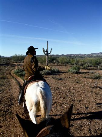 Arizona Tengah, AZ: Desert trail ride with Fort McDowell Adventures