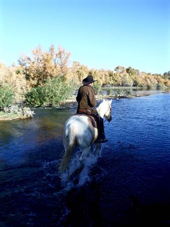 Arizona central, AZ: Crossing the Verde River on desert trail ride with Fort McDowell Adventures
