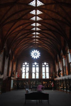 Smithsonian Institution Building: Inside a swing