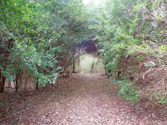 Hickory Trails Park