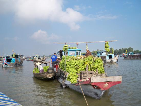 photo3.jpg - Picture of Real Mekong Delta Tours, Ho Chi ...