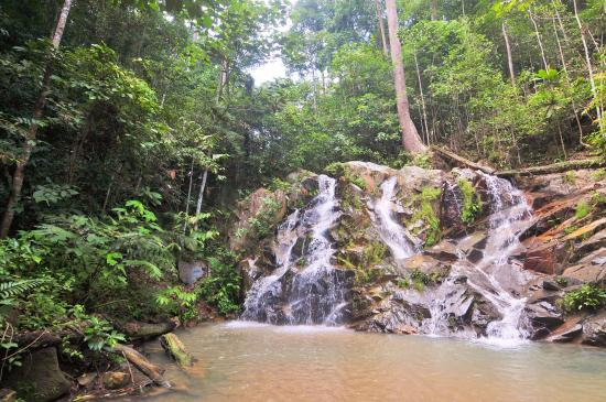 Pulai Waterfall