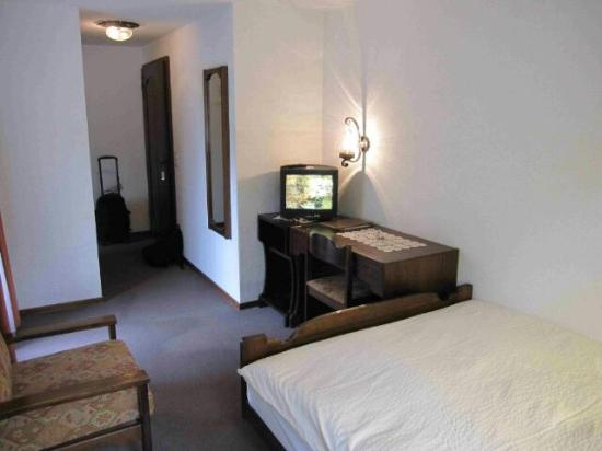 Hotel Artemis Garni: 36号室