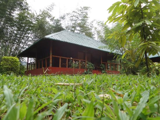 Bamboo Grove: Double Cottage