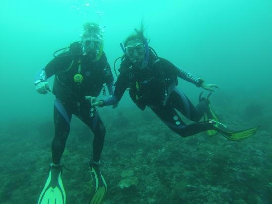 Little Mermaid Dive Resort : photo1.jpg