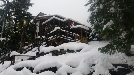Whistler Lodge Hostel: 20151213_151636_large.jpg