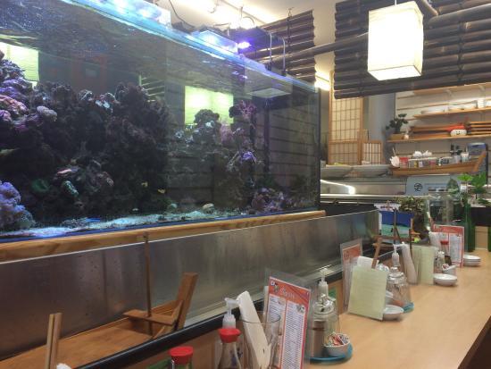 Sushi Hi: photo2.jpg