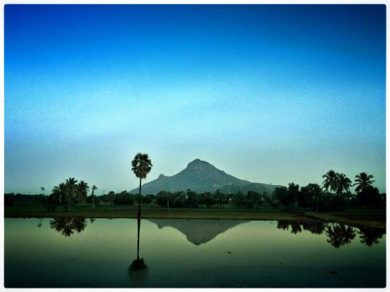 Tiruvannamalai, India: View from the countryside
