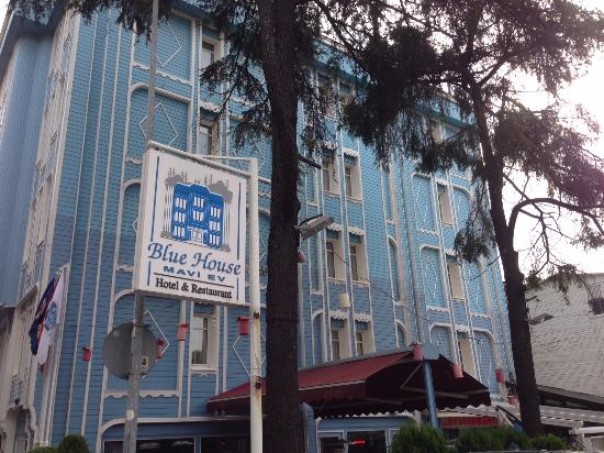 Blue House Hotel : Вид на отель