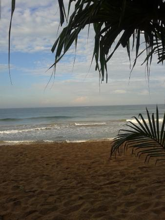 เทมเปิ้ล ทรี รีสอร์ท&สปา: beach view