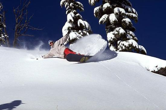 Best Western Skyline Motor Lodge: Snowboarding