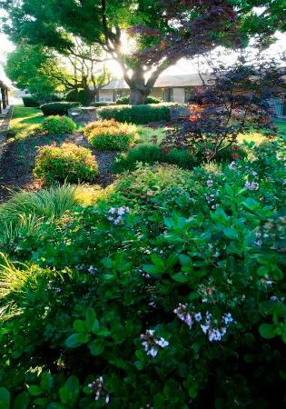 Best Western Plus Garden Inn Updated 2018 Prices