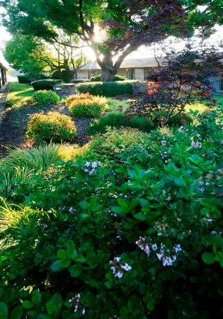 Best Western Plus Garden Inn Updated 2018 Prices Reviews Photos Santa Rosa Ca Sonoma