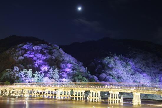Kyoto Arashiyama Hanatouro