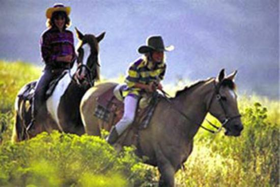 BEST WESTERN Twin Islands: Horseback Riding