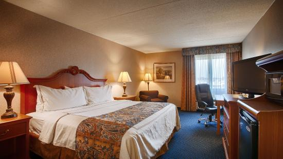 Best Western Mount Vernon/Ft. Belvoir : Guest Room