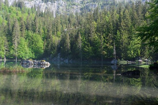 Lac Vert: Reflets