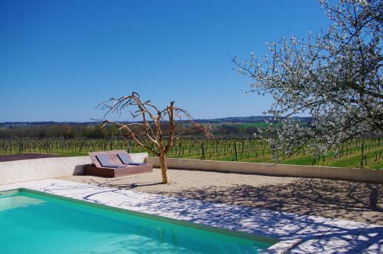 Camiran, Frankrig: Pool time