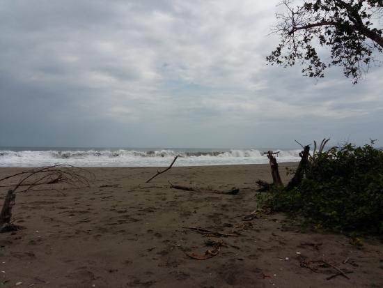 Le Colibri Rouge: Puerto Vargas2