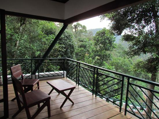 The Balcony Picture Of Forest Canopy Thekkady Tripadvisor