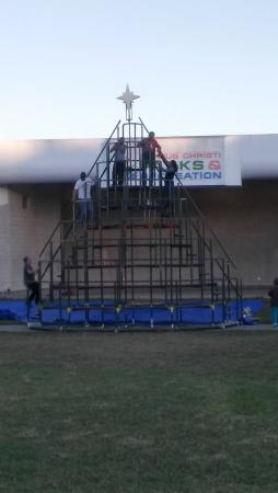 Living Christmas Tree being built in Cole Park Dec. 2015