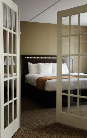 Comfort Suites- Norwich: Suite